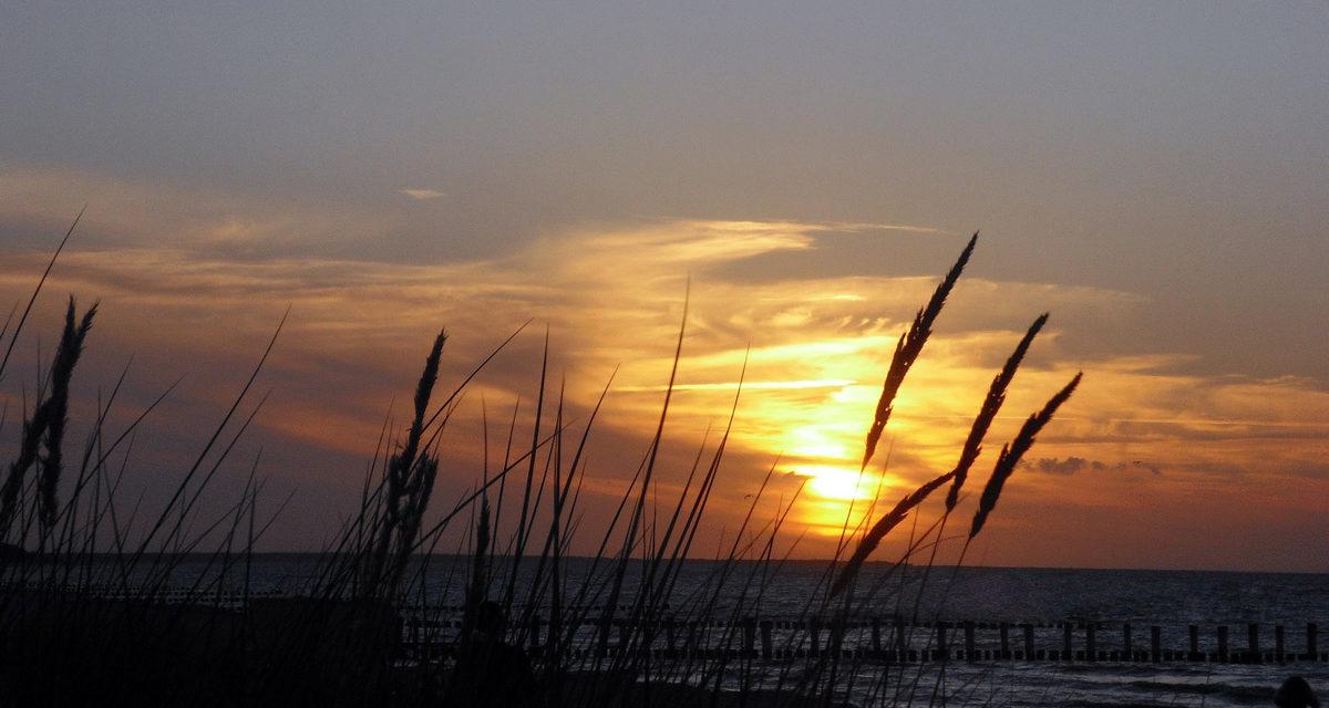 Erholungsurlaub auf Fischland-Darß-Zingst