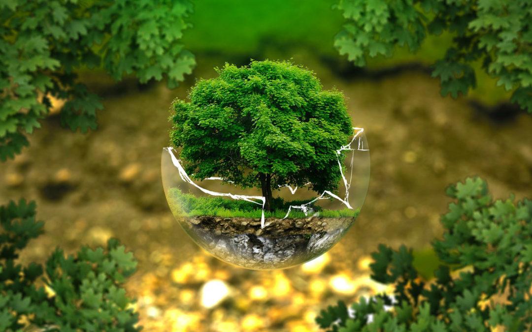 Tipps für mehr Nachhaltigkeit im Alltag